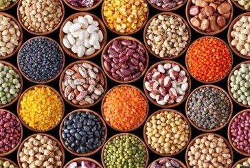 Kas Yapan Sıradışı 7 Protein Kaynağı