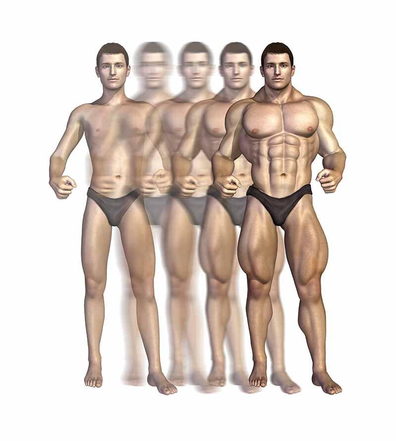 Kilo aldırıcılar (weight gainer) karbonhidrat ve sağlıklı yağ kazanımı sağlar.