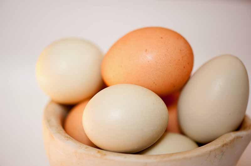 Yumurta A, D, E ve B grubu vitaminlerini içerir.
