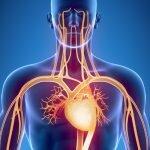Metabolizma Hızlandırmak İçin Ne Yapmak Gerekir?