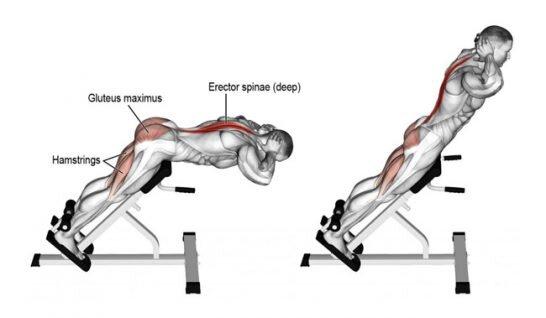 Back extension hareketi nasıl yapılır?