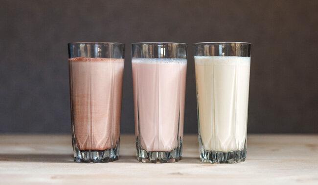 Danone Pro Plus süt ve yoğurt ürünleri