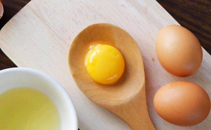 Yumurta Protein Miktarı Nedir, Kaç Kaloridir?